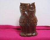 Vintage Frankoma Owl Mid Century Bird Sculpture # 110 Dark Brown Mid Century