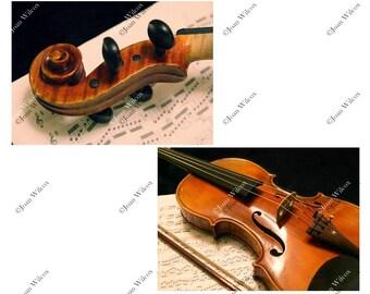 Set of 2 Violin Concerto Photos Viola Strings Original Fine Art Photography Wall Art Photo Prints