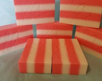 Strawberry Shortcake Sudsy Soap  6 count