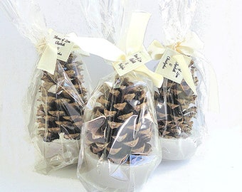 25 Pine Cone Fire Starter Bridal Shower Favors with DIY Assembly for Brides on a Budget, Clear Gift Bags & Personalized Tags Included