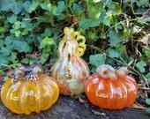 Autumn Squash, Set of 3 B...