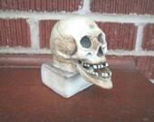 Vintage 1930s Bisque Figural Skeleton Nodder Jaw Candle Holder