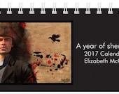 A year of shenanigans 2017 desk calendar from Elizabeth McGlasson