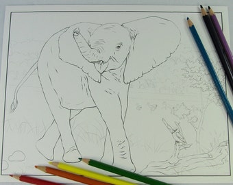 Grumpy Baby Elephant Printable Download Adult Coloring Page by Carrie Michael DTPD