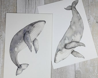 Humpback whale watercolour paintings - whale art - set of two Watercolor whales