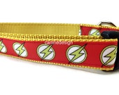 Dog Collar, The Flash, 1 inch wide, adjustable, quick release, metal buckle, chain, martingale, hybrid, nylon