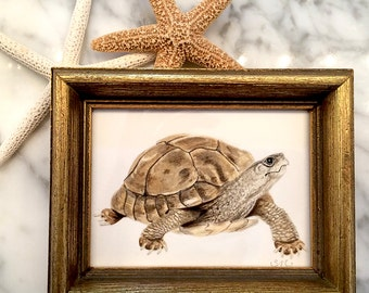 Turtle Original Small Painting in Vintage Frame | Decor | Small Art | Framed Art | Beach House | Gift |Self Gift