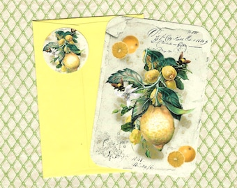 Note Cards, Lemons & Bees, Bee Note Card Set, Stickers, Botanicals