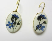Blue Forget Me Nots, Lever-back Earrings,  Pressed Flower Jewelry, Real Flowers, Resin, (1849)