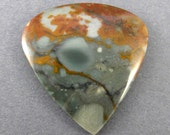 Rocky Butte Jasper Designer Cabochon Oregon SALE 50% OFF