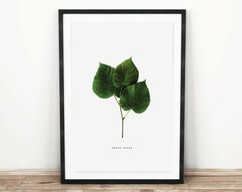 PRINTABLE wall art. Green Thumb series: LIME 11x14. botanical, green, room decor, modern, natural