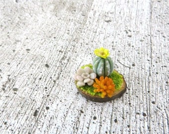 Cactus and succulents on a log slice in 1 inch scale