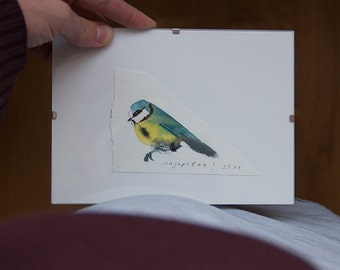 watercolor original drawing of a blue tit, glass frame