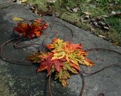 Autumn Fairy Wings and Halo Costume Set