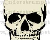 Bonehead Skull Stencil Set