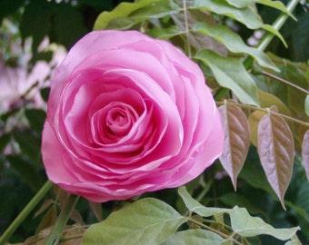 Flower hair, flower clip, Bridal hair clip, flower rose, Bridal rose, hair flower, Pink rose, hair accessories, Romantic hair, hair clip,