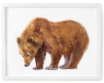Bear Print of Watercolor Painting, Animal Giclee Print