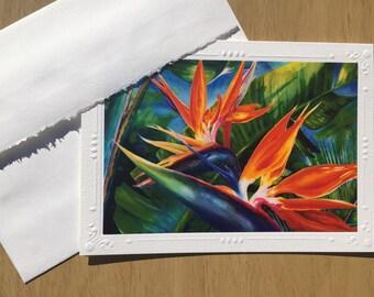 Greeting Card SET OF 5 Artist Christie Marie Tropical flower Bird of Paradise art print card, blank Note Card / envelope, art print Framable