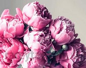 Peony Print - Flower Photography- Pink Girl Nursery Decor, Silver, Gray, Pink Flower Photos, Pink Peonies