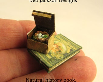 From *DJD* 12th scale natural history book and boxed robin's nest.