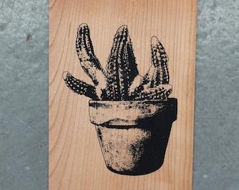 Cactus - Screen print on wood veneer // Cactus - Sérigraphie sur placage de bois