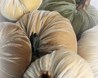 Pumpkin in Plush Velvet - Sage  - large - with handmade stem