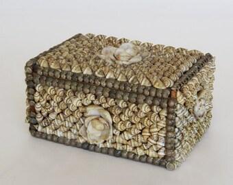 Exquisite Seashell Box