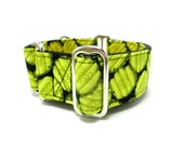 """Houndstown 1.5"""" Pickles Unlined Buckle or Martingale Collar, Any Size"""