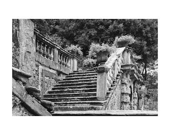 "Fine Art Black & White Architecture Photography of Villa in Tuscany - ""Steps in the Garden at Villa Torrigiani"""