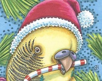 Christmas Parakeet Santa Candy Cane Holiday Bird Art ACEO Susan Brack Ebsq