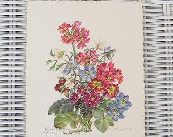 ON SALE Vintage Postcard German Munich Spring Flowers Unused Collectible Fruhlingsblumen