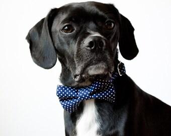Navy Blue Polka Dot Bow Tie Dog Collar