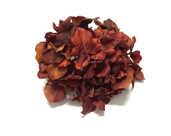 Artificial Hydrangea Head in Shades of Rust- Artificial Flowers, Silk Flowers, Wedding, Flower Crown, Scrapbooking, Wreath, Hair Accessories