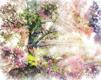 pink floral wall art - spring tree photography - floral print - nature photography