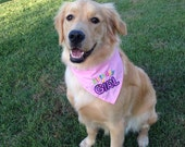 Birthday Girl or Birthday Boy Dog Bandana with Applique
