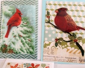 Winter Birds Quilted Greeting Card