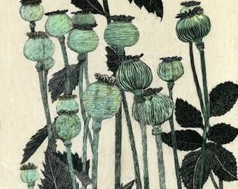 Art Card Poppy Seedheads of original Scraperboard Blank Card