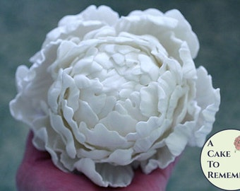 Gumpaste Flowers Tutorials Bundle for cake decorating-- All three Including Peonies, Hydrangeas and Spring Flowers