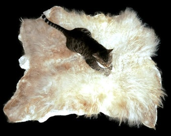 Wool Cat Bed - Dog Bed - Humane Sheep Fleece Felted Wool Rug Pet Bed - Icelandic Cream - Ready to Ship - Supporting US Small Farms