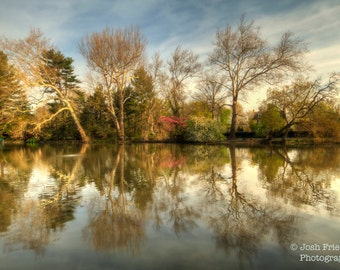 Spring Lake and Reflection, Fine Art Photograph, Trees, Green, Blue Sky, Bucks County, Pennsylvania, Landscape, HDR, Lake Afton, Wall Art