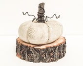 Small Natural Concrete Pumpkin