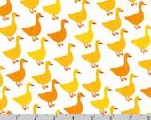Urban Zoologie - Ducks Buttercup by Ann Kelle from Robert Kaufman