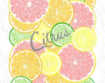 Citrus Fruit Lemon Orange Lime Grapefruit Printable Art, Hand Drawn Art, Kitchen Food Digital Wall Art, PNG, JPG, PDF