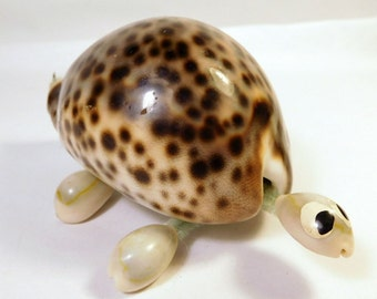 Vintage SEASHELL Turtle - Cowrie Shell - Beach Cottage Seaside Decor
