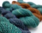 """Handspun Yarn Set-  658m, 211g, DK Weight, Merino, Corriedale and Silk, """"French Shutter"""""""
