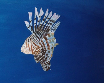 Fuzzy Dwarf Lionfish, swimming under the ocean