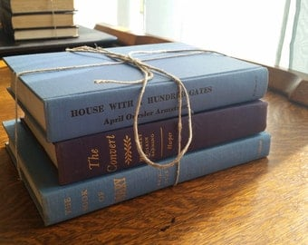 Decorative Light Blue Book Bundle including House With A Hundred Gates Vintage Books
