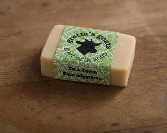 Organic Tea Tree Eucalyptus Goat Milk Soap from Hand Milked Goats that Graze on Organically Managed Pasture