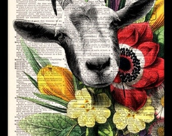 Flower Goat Face - Vintage Dictionary Print Vintage Book Print Page Art Upcycled Vintage Book Art