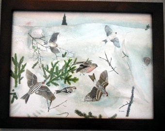 Winter Finches Redpolls on Snowdrift with Evergreen Branches Original Watercolor